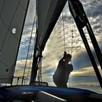 Hoist That Sail