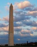 Twilight in DC