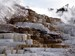 Mammoth Hot Springs Travertine Terraces with Cascading Thermal Waters