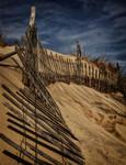 Weary Fence